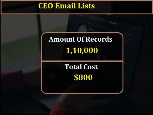 CEO Email Lists-min