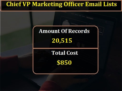 Chief VP Marketing Officer Email Lists-min