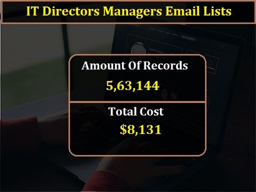 IT Directors Managers Email Lists-min