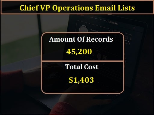 Chief VP Operations Email Lists-min