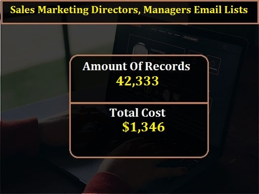 Sales Marketing Directors, Managers Email Lists-min