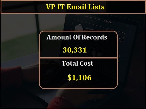 VP IT Email Lists-min