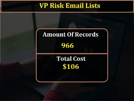 VP Risk Email Lists-min